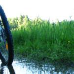 Como transportar la bicicleta en el coche: portabicis