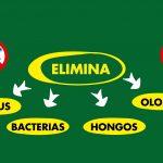 Tratamiento de Ozono, desinfección ecológica